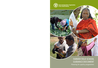 FAO (2016) Farmer Field Schools Guidance Document - Planning for quality programmes - overview